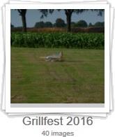 Grillfest bilder 2016